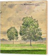 Memories Of The Lake Wood Print