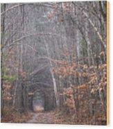 Memory Lane 1 Wood Print