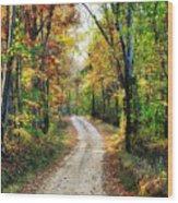 Country Roads Wood Print