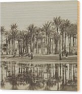Men With Goats Under Palm Trees On The Water In Bedrechen, Bonfils, C. 1895 - In Or Before 1905 Wood Print