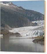 Mendenhall Glacier Alaska Wood Print