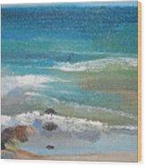 Mendocino Coast-ocean View Wood Print