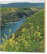 Mendocino Headlands Wood Print