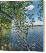 Mendota Lake Wood Print