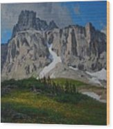 Mendota Peak Wood Print