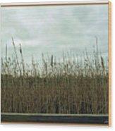 Mentor Marsh Wood Print