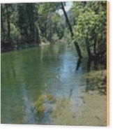 Merced River Banks Wood Print