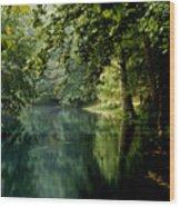 Meremac Springs  Wood Print by Brenner Studios