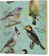 Meridian State Park Wood Print