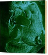 Mermaid And Fish Wood Print