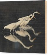 Merritt Island Egrets Wood Print