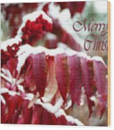 Merry Christmas Red Leaves  Wood Print