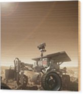 Mers Rover Wood Print