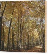Merwin October Shadows Wood Print