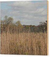 Merwin Prairie Autumn I Wood Print