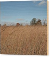 Merwin Prairie Autumn II Wood Print