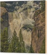 Mesa Falls In Summer Wood Print