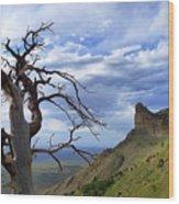 Mesa Verde Mood Wood Print