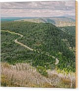Mesa Verde Park Overlook II Wood Print