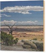 Mesa View In Utah Wood Print
