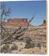 Mesas Near Moab Wood Print