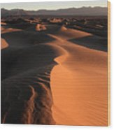Mesquite Sand Dunes In Death Valley National Park At Sunrise Wood Print