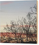 Mesquite Sunset Three Wood Print