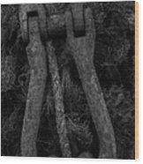 Metal Links Wood Print