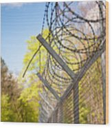 Metal Sharp Barbed Wire Wood Print