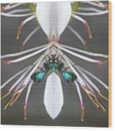Metallic Bees On Gaura Wood Print
