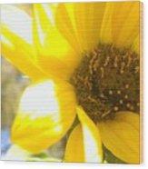 Metallic Green Bee In A Sunflower Wood Print