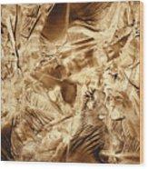 Metamorphoses Wood Print