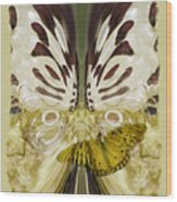 Metamorphosis Wood Print
