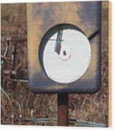 Meter Wood Print
