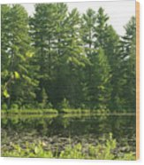 Mew Lake Algonquin Park Wood Print