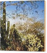 Mexican Country Road Wood Print