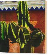 Mexican Style  Wood Print