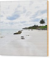 Mexico Beaches2 Wood Print