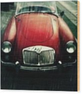 MG Wood Print by Cathie Tyler