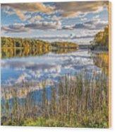 Mi Stoney Creek Wood Print