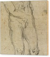 Michelangelo: Male Nude Wood Print