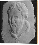 Michelangelo Wood Print