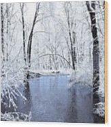 Michgan Winter 10 Wood Print
