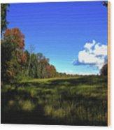 Michigan Fall Colors 12 Wood Print