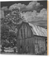 Michigan Old Wooden Barn Wood Print