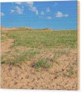 Michigan Sand Dune Landscape In Summer Wood Print
