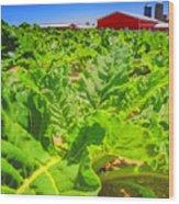 Michigan Surgar Beet Farming Wood Print