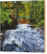 Michigan Waterfall Wood Print