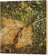 Microcosm Of Fall Wood Print
