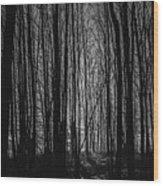 Mid-night Wood Print